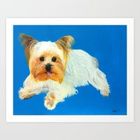 yorkie Art Prints featuring Yorkie by Kelsey Lopez
