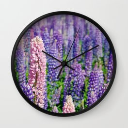Lupins, Lake Tekapo Wall Clock