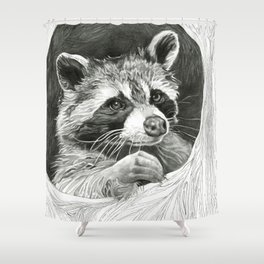 Raccoon In A Hollow Tree Drawing Shower Curtain