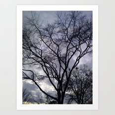 Haunted Sky and Trees Art Print