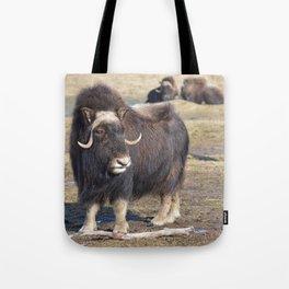 Arctic Muskox Tote Bag