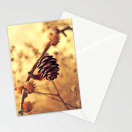Life as it Is Stationery Cards