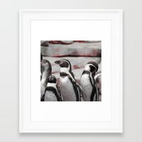 penguins Framed Art Prints featuring penguins by MehrFarbeimLeben