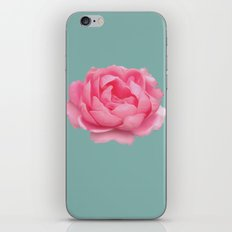 Rose on mint iPhone & iPod Skin