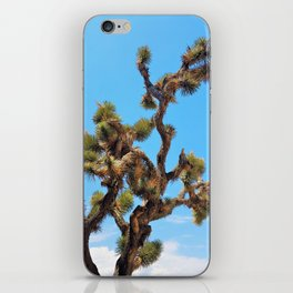 Joshua Tree Against Sky iPhone Skin
