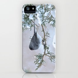 Snow Day Junco iPhone Case