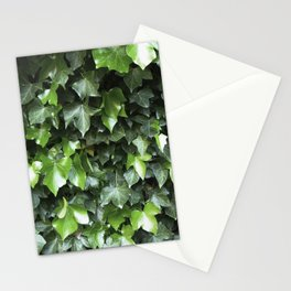 Evergreen Ivy Stationery Cards