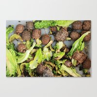 turtles Canvas Prints featuring Turtles  by Barbo's Art