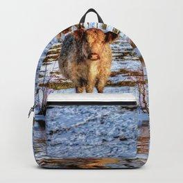 Sarah & Hamish - Highland Cattle Backpack