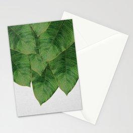 Banana Leaf III Stationery Cards
