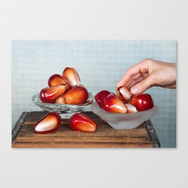 Pomegranate Seed Salad Canvas Print