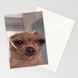 Meme Dog Stationery Cards