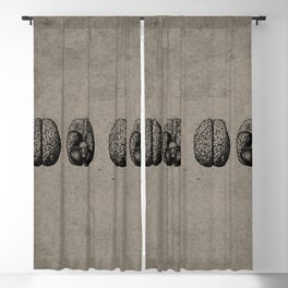 Row o' Brains - Engraving - Vintage - Old Black, White & Brown Blackout Curtain