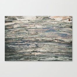 Old Rotten Wood Canvas Print