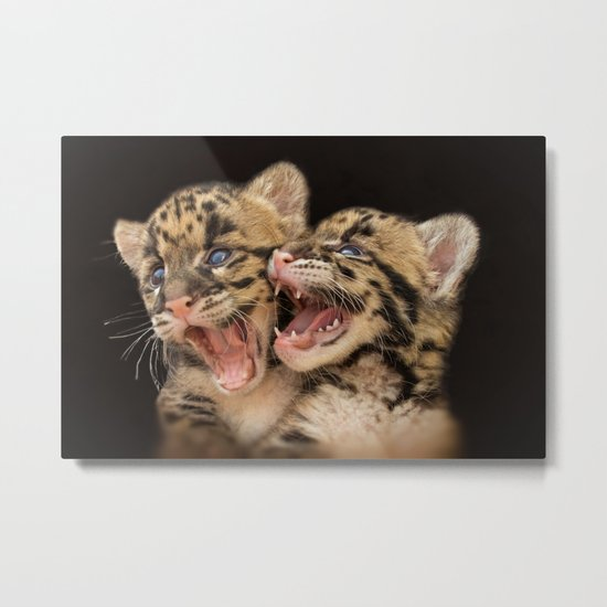 CLOUDED LEOPARD CUBS LOVE Metal Print