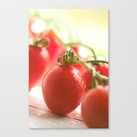 italian Canvas Prints featuring Italian tomatoes  by Tanja Riedel