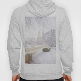 Central Park New York City Snow Day Hoody