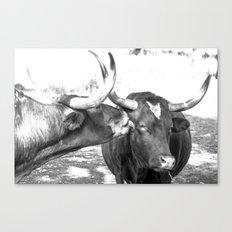 Kisses Canvas Print
