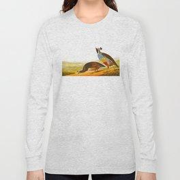 Scientific Bird Illustration Long Sleeve T-shirt