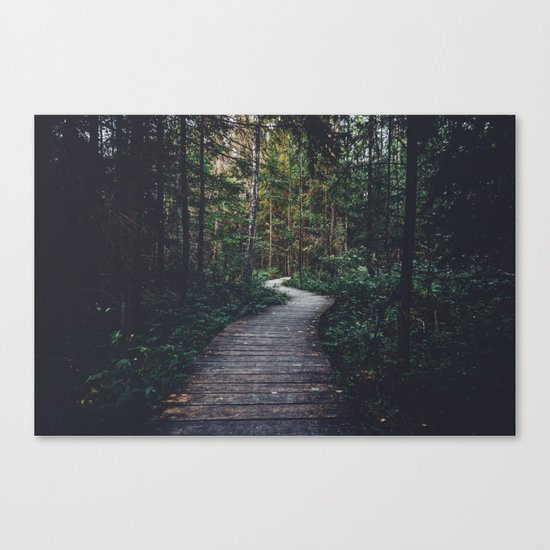 Path Unknown Canvas Print