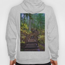 Giant Cedars Boardwalk in British Columbia, Canada Hoody