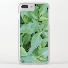 Cornwall Gardens Green Leaves Photo 1774 Clear iPhone Case