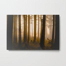 Where Nobody Roams - Nature Photography Metal Print