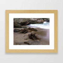 Drift Wood Framed Art Print