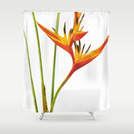 Heliconias Flower Shower Curtain