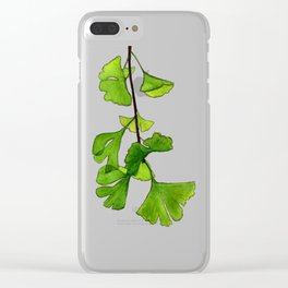Branche de ginkgo descendante sur fond gris Clear iPhone Case