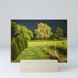 Trees At Sunset Mini Art Print