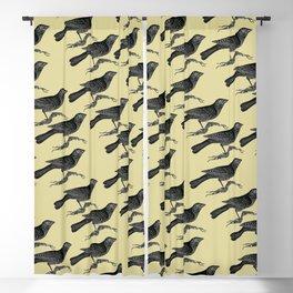 Blackbirds Blackout Curtain