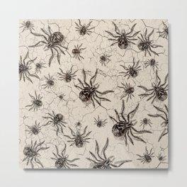 Crab Spider  Khaos Metal Print