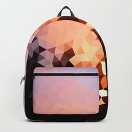 Design 107 Backpack