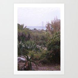 Cactus garden in Lisbon Art Print