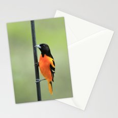 Baltimore Oriole Stationery Cards