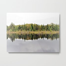 When A Tree Falls In The Forest: Soundwave Metal Print
