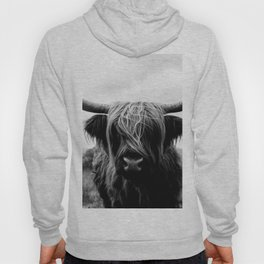 Scottish Highland Cattle Black and White Animal Hoody