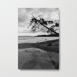 Mount Douglas park Metal Print