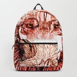 Alpha: Red Backpack