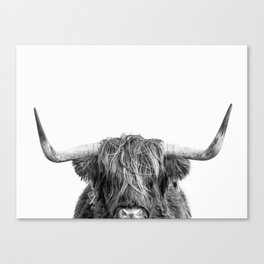 """Highland Cow """"I See You"""" Canvas Print"""