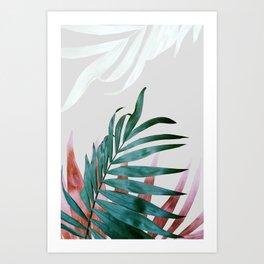 Plant leaves, Foliage, Plants, Botanical Art Print