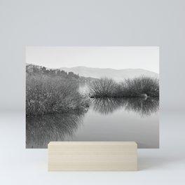 Lakescape in bw Mini Art Print