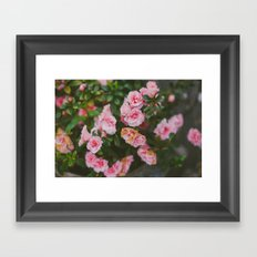 Small Roses Framed Art Print