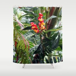 Tropical Heliconia Flowers 03 Shower Curtain