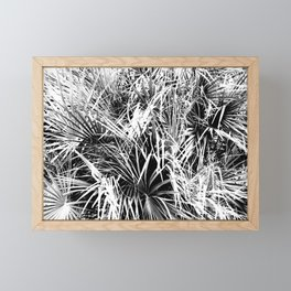 Palm Fronds In Black and White Abstract Photography Framed Mini Art Print