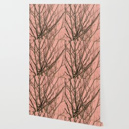 Bare tree against a pink wall Wallpaper