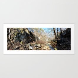 Alone in Secret Hollow with the Caves, Cascades, and Critters, No. 19 of 21 Art Print