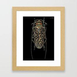 Insecte long avec antennes colors fashion Jacob's Paris Framed Art Print