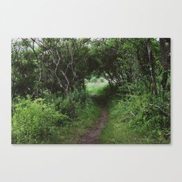 Western Greenway Trail I Canvas Print